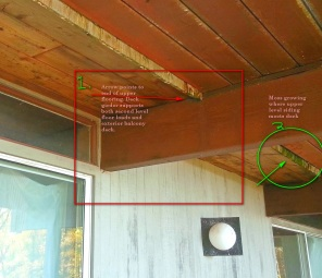 Photo depicts the underside of the Hillsdale balcony deck before the start of construction. Note 1 in the red box shows transition on the underside of floor decking to balcony decking. This beam supports floor, deck and roof loads. The green circle shows moss growing where the siding meets the decking.