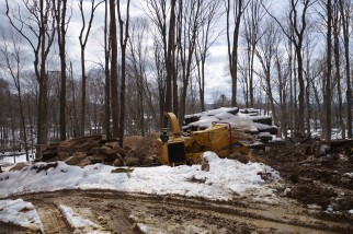 Lumber, Mulch firewood separated for re-use
