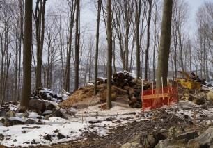Lumber to be milled for project use